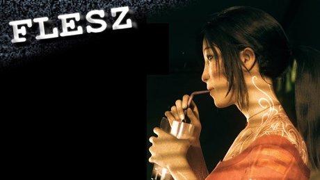 FLESZ - 13 stycznia 2011