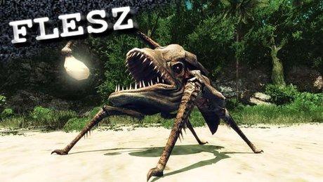 FLESZ - 23 kwietnia 2012